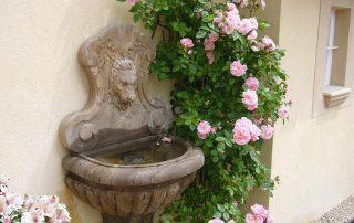 Blumen Villa Euthymia Südfrankreich Côte d'Azur